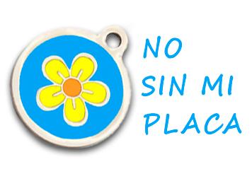 No Sin Mi Placa